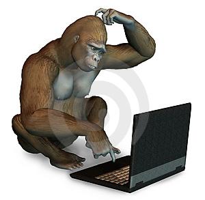 gorila_laptop
