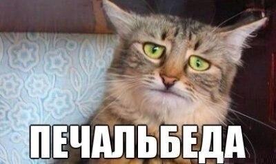 ruska_macka